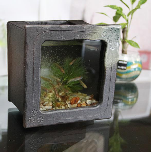 Mauichi Honten Shigaraki Yaki Aquarium Earthenware Square Small