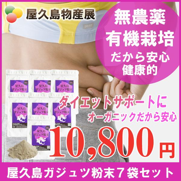 屋久島 紫ウコン ( ガジュツ ) 粉末 100g 7袋 セット 【 屋久島産 無農薬 無添加 ダイエット サポート サプリメント 】