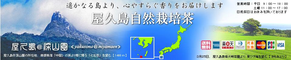 屋久島@深山園:無飛散農薬の屋久島で有機無農薬無化学肥料でお茶を栽培しております。