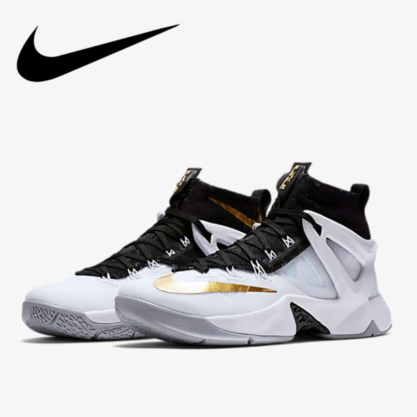 2016 models Nike Nike Basketball Shoes LeBron Ambassador 8 818678 170