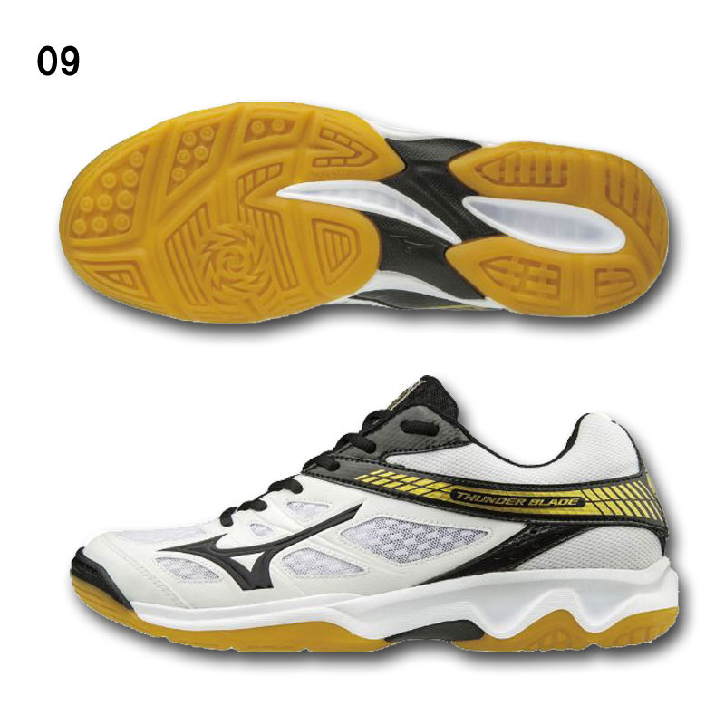 mizuno volleyball shoes 2019 price 60