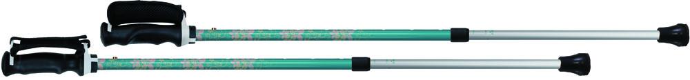 SINANO(シナノ) もっと安心2本杖エルシオン125537