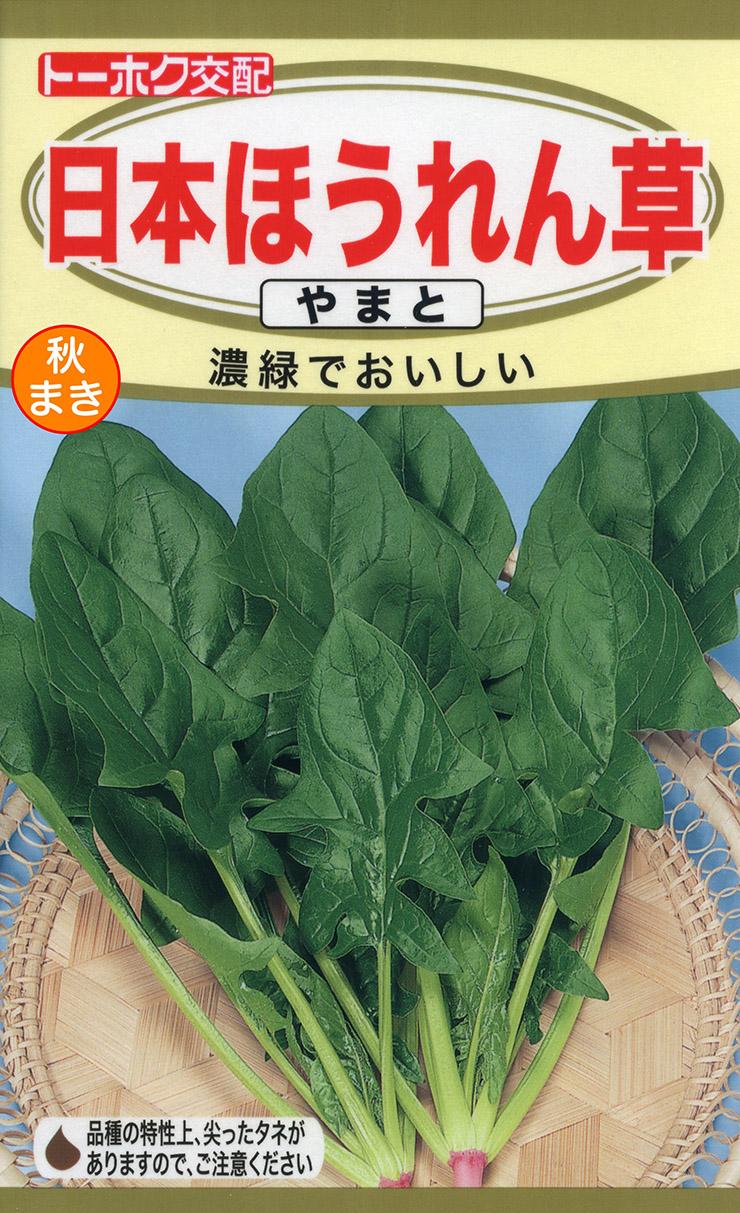 野菜種 店 ほうれん草種日本ほうれん草 最安値挑戦 やまと