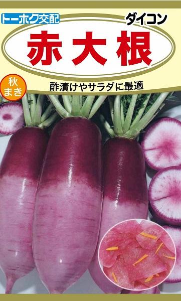 大決算セール 野菜種 超特価SALE開催 メーカー:トーホク 大根種赤大根 もみじ トーホク