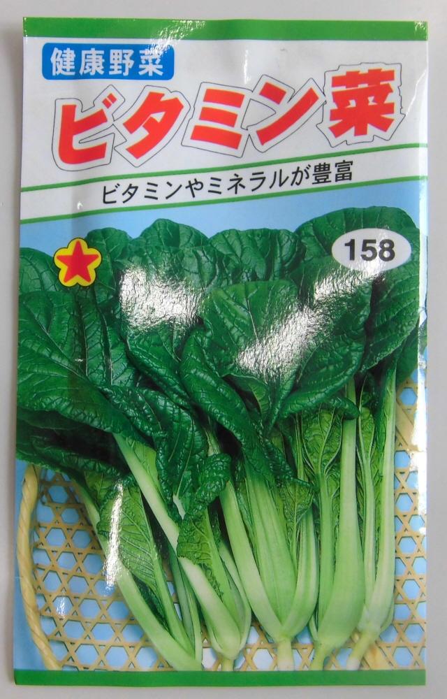野菜種 ビタミン菜種ビタミン トーホク ミネラル豊富プランターでも Seasonal Wrap入荷 好評
