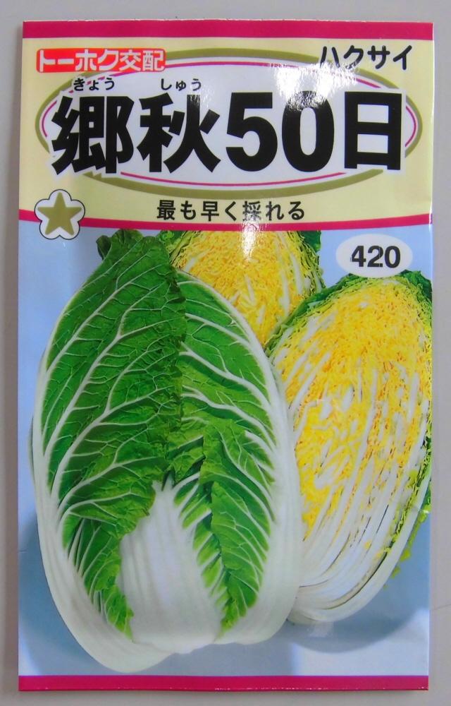 保証 通販 激安◆ 野菜種 はくさい種郷秋50日早生最も早く採れる