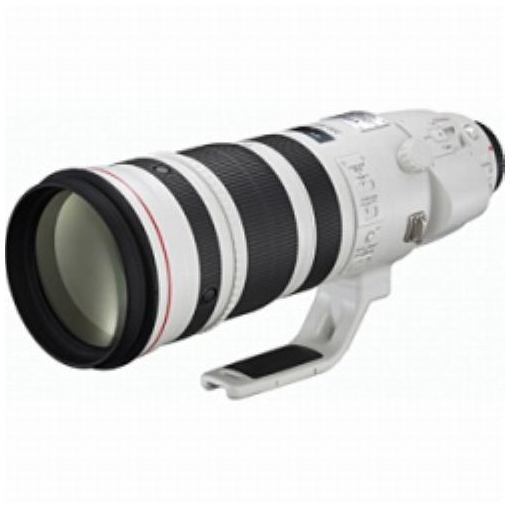 交換用レンズ EF200-400mm F4L IS USM EXTENDER 1.4×