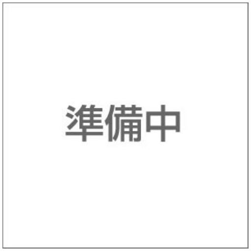 【ポイント10倍!】プリンストン PDD3/1333-4G DDR3-1333 PC3-10600 240pin DIMM 4GB PDD3/1333-4G
