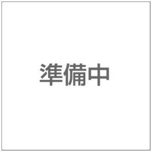【ポイント10倍!4/22(月)20:00~4/26(金)01:59まで】ソリデックスアルミハードケ
