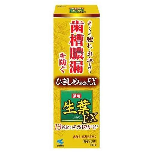 保障 格安店 小林製薬 生葉EX100G 生葉
