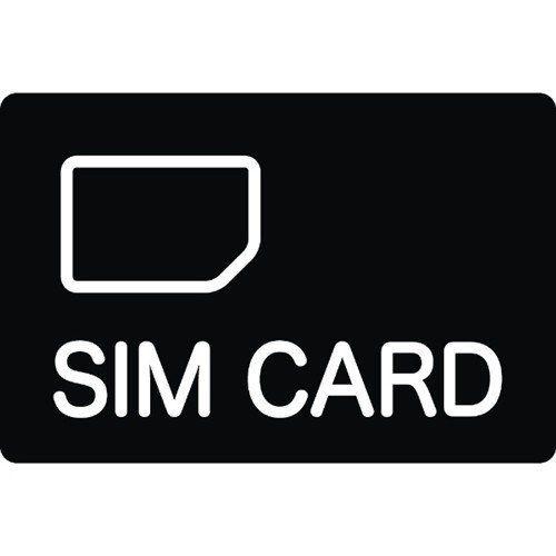キングジム GS-3 グローバル対応SIMカード(3GB)