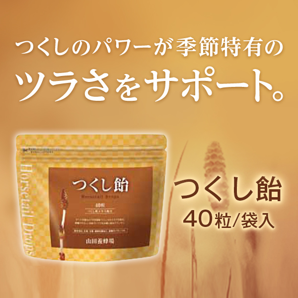 【山田養蜂場】つくし飴 40粒/袋入 ギフト プレゼント 健康食品 人気 母の日 プレゼント