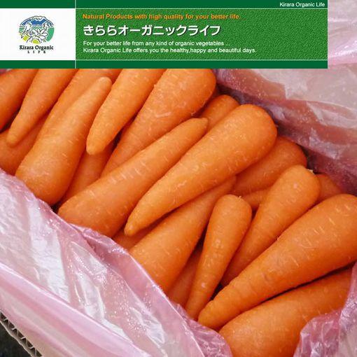 普段よく使うお野菜の業務用サイズ 即日出荷 ケース売りです 山口県 美祢市 割り引き きららオーガニック 業務用 にんじん 有機野菜 ライフ 10kg混合