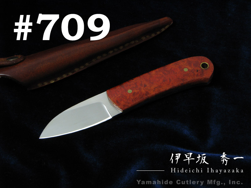 伊早坂 秀一/Hideichi Ihayazaka #709 ATS34 シースナイフ/花梨瘤