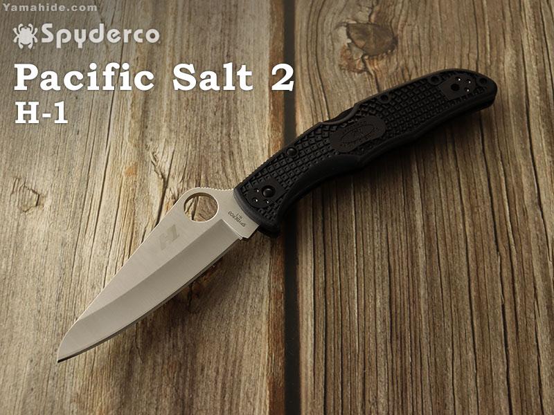 Plane 2 直刃 スパイダルコ Black 2 Pacific 折り畳みナイフ,Spyderco ブラック C91PBK2 Salt パシフィックソルト