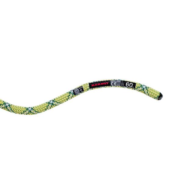 Mammut マムート [廃盤特価30]Mammut マムート 9.5 Infinity Protect/yellow-emerald.70m 2010-02701