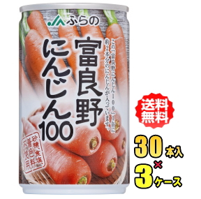 JA 富良野(ふらの)にんじん100 160g缶×30本入3ケース(90本)お買得セット【HLS_DU】