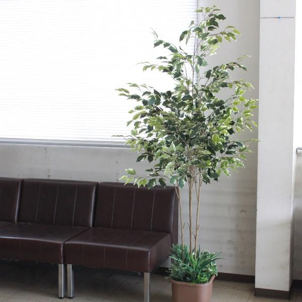 観葉植物 大型 フェイク ベンジャミン 180cm TB1814 造花 フェイクグリーン CT触媒 snb