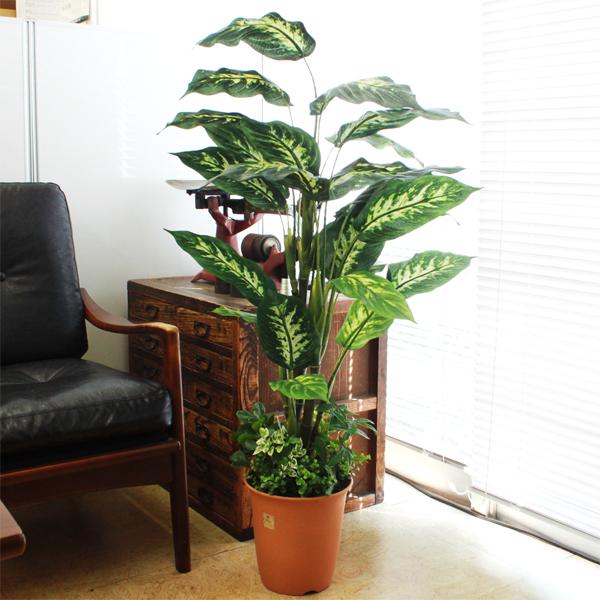 フェイクグリーン 大型 ミディアムサイズグリーン 110cm ディフェンバキア 人工観葉植物 snb CT触媒