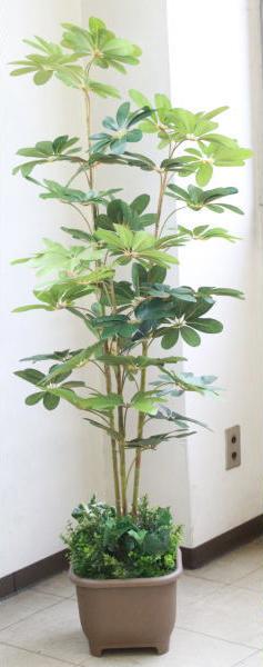 観葉植物 大型 造花 カポックツリー 150cm TB938 DG 人工観葉植物 snb CT触媒