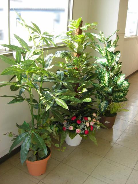 観葉植物 大型 フェイク インテリアグリーン3本入福袋 snb CT触媒