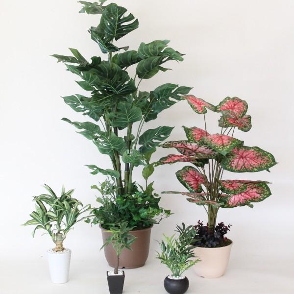 観葉植物 大型 フェイク メインが選べる!インテリアグリーン詰め合わせセット snb CT触媒