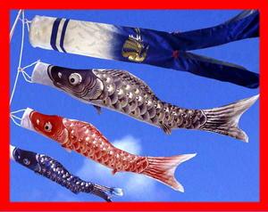 【激安大特価!】  【鯉のぼり】1.5m慶祝鯉オリジナル吹流し【DX万能台セット】【送料無料】, 加西市:b9174736 --- canoncity.azurewebsites.net