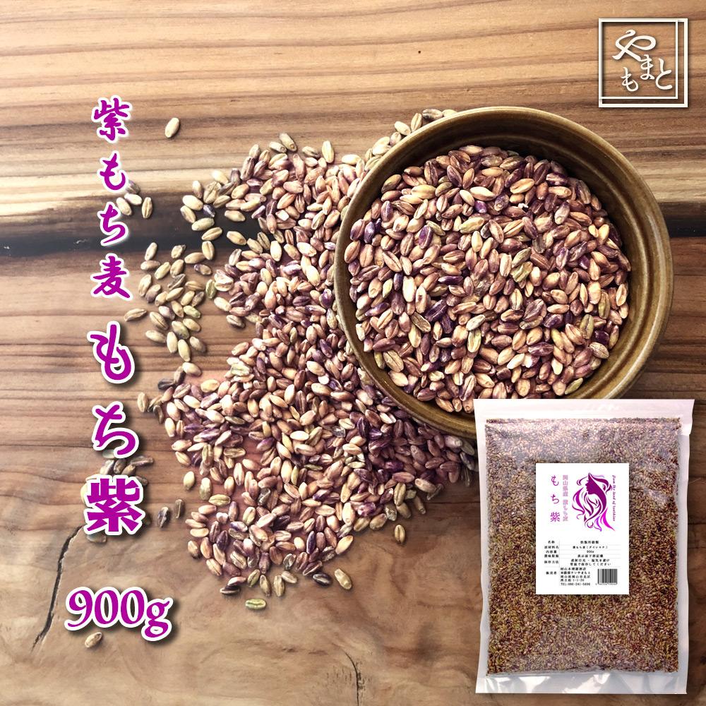令和元年 新麦 岡山県産 紫もち麦(ダイシモチ) もち紫 900g  送料無用 安い お試し おすすめ ポイント消化 ぽっきり ダイエット健康美容 メール便