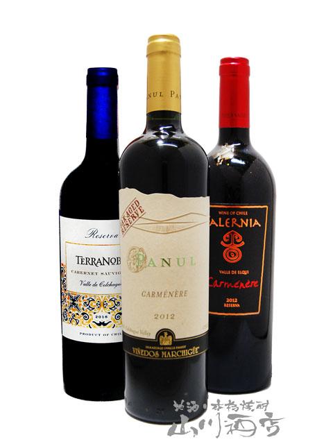 当店自慢のチリ赤ワインを集めたセット! 【 送料無料 】【 チリ 赤ワイン 】 厳選チリ赤ワインセット ( 750ml×3本 ) 【 3本セット 】【 2667 】【 贈り物 ギフト プレゼント ホワイトデー 】