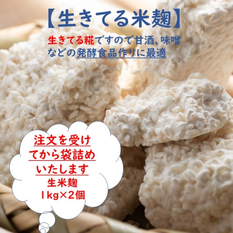 一粒一粒に糀菌がいきわたるよう丹念に手作業にて作り上げました 糀菌や酵素の働きが活発で 旨みを引き出しながら熟成を続ける 発酵食品作りに最適な本物の生きた生糀です 送料無料 生米こうじ 1kg×2 生きた糀 会津産コシヒカリ使用 酵素の働きが活発 冷凍保存可能 発酵食品作りに最適 塩糀 甘酒 醤油麹 新鮮 塩麹 限定特価 こうじ 新作入荷 国産 みそ作り 生酵素 醤油糀 麹 蔵元直送 生麹 こうじ水 味噌 味噌作り