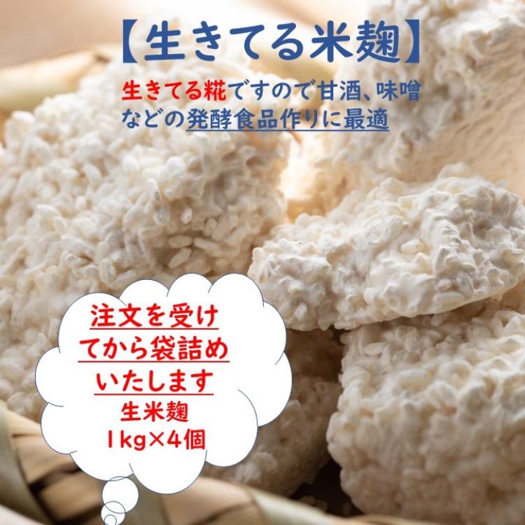 一粒一粒に糀菌がいきわたるよう丹念に手作業にて作り上げました 糀菌や酵素の働きが活発で 旨みを引き出しながら熟成を続ける 発酵食品作りに最適な本物の生きた生糀です 送料無料 生米こうじ 1kg×4 生きた糀 会津産コシヒカリ使用 酵素の働きが活発 冷凍保存可能 発酵食品作りに最適 塩糀 甘酒 生麹 蔵元直送 送料無料お手入れ要らず 新鮮 こうじ水 醤油麹 こうじ みそ作り 味噌作り ストアー 生酵素 醤油糀 塩麹 国産 麹 味噌