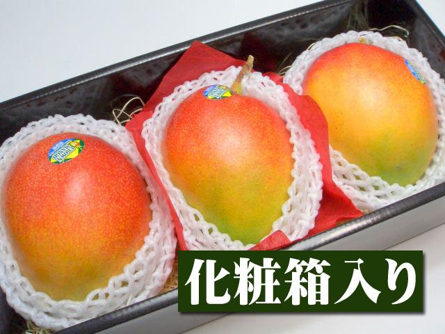 【11月上旬以降予定★】ブラジル産 アップルマンゴー[大玉3個入り化粧箱]【10P07Nov15】