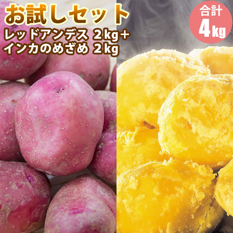 じゃがいも じゃがいも福袋 レッドアンデス 2kg・インカのめざめ 2kg)セット じゃがいも ジャガイモ 送料無料 北海道 食品 食材 通販