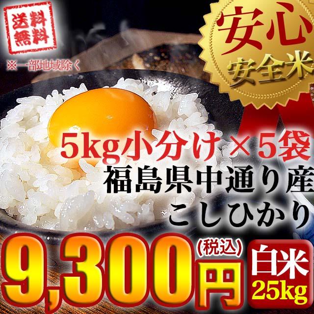 【送料無料】平成29年産 福島県中通り産 コシヒカリ 白米:25kg(5kg×5個)