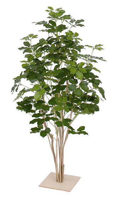 タカショー グリーンデコ 観葉植物 「シェフレラ板付 1.3m」 板付 <人工植物>