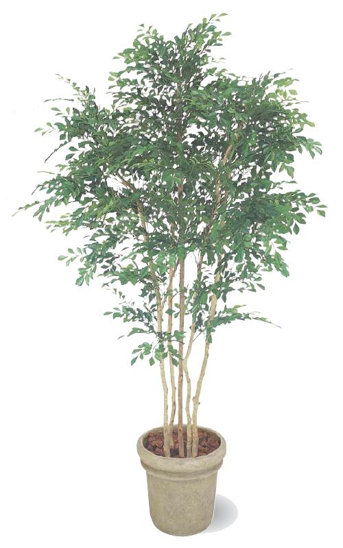 タカショー グリーンデコ鉢付 観葉植物「トネリコ 5本立」1.8m
