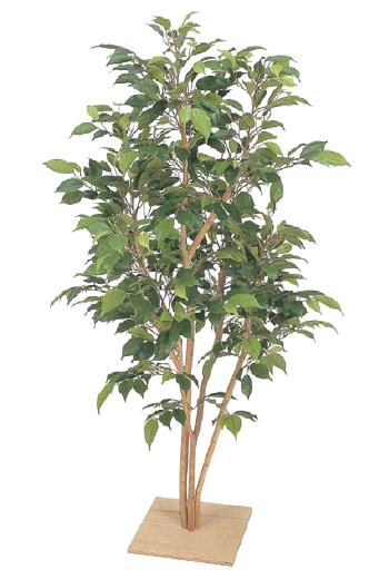 タカショーの人工植物グリーンデコ グリーンデコ 板付「グリーンデコベンジャミン板付 ナターシャ」1.3m 屋内用グリーンデコ