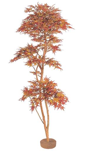 大好き タカショー グリーンデコ 鉢無「紅葉もみじ 鉢無」1.8m:くらしのもり-花・観葉植物