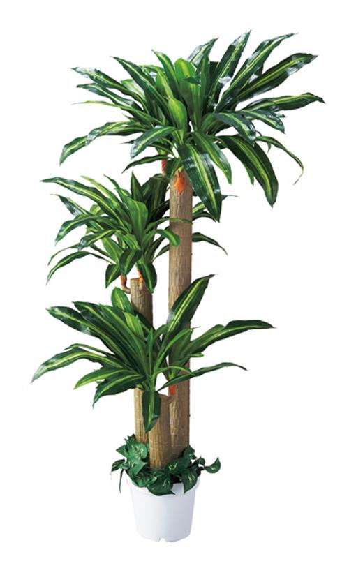 人工樹木 幸福の木(H180cm) 1台 立ち木 人工観葉植物 会社、事業所、自宅の部屋を装飾で美しく華やかに。