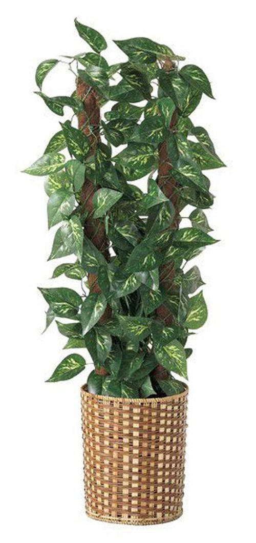 人工観葉植物 ポトス 立ち木(H110cm) 1台 人工樹木