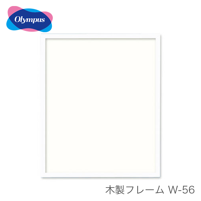 刺しゅう額 刺繍額 フレーム 額 額縁 木製 / Olympus(オリムパス) 額 木製フレーム W-56