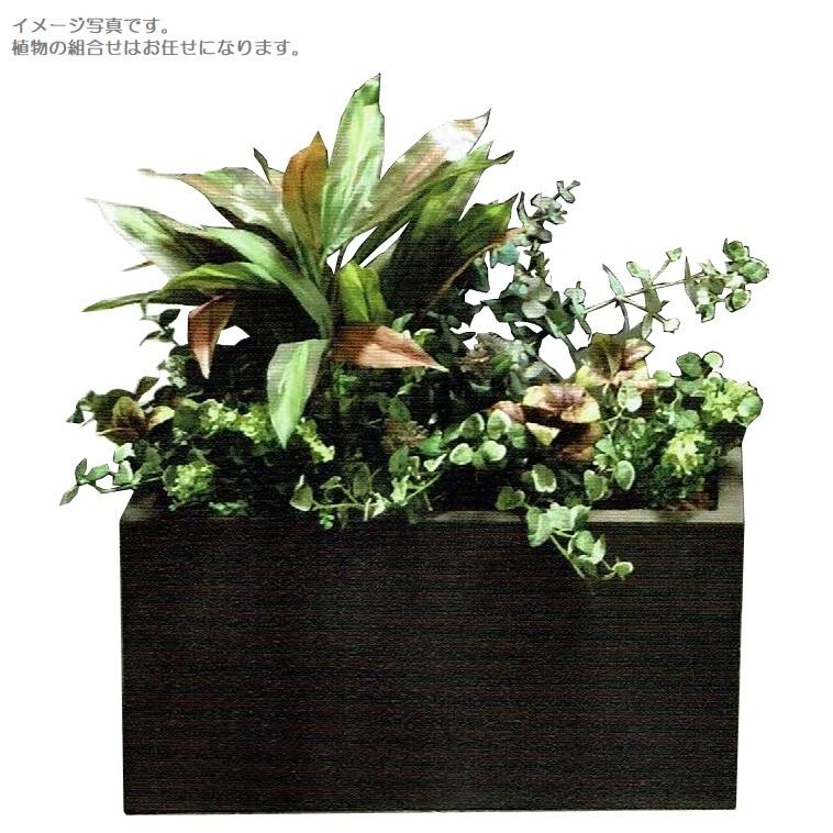 ラウンド  【人工観葉植物】アーティフィシャルグリーンアレンジ 鉢付き 幅65cm rg-002 インテリア 造花, オーシャンデプト edf4f4b1