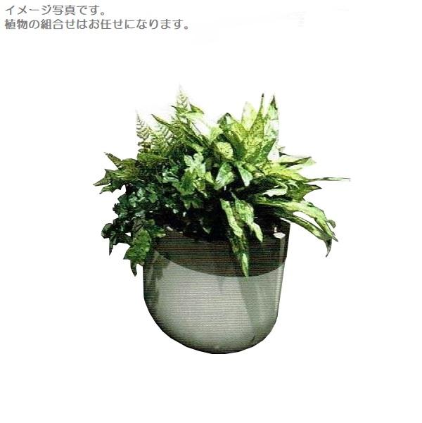 【人工観葉植物】アーティフィシャルグリーンアレンジ 鉢付き 幅50cm rg-004 インテリア 造花