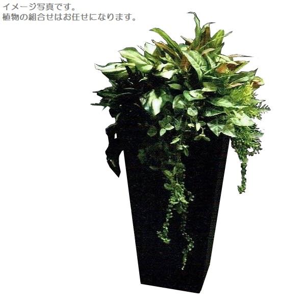 【人工観葉植物】アーティフィシャルグリーンアレンジ 鉢付き 幅65cm rg-006 インテリア 造花