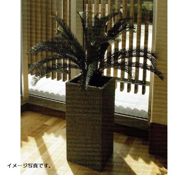 【人工観葉植物】アーティフィシャルグリーンアレンジソテツ 鉢付き 幅80cm rg-007 インテリア 造花