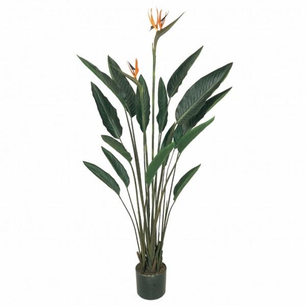 人工観葉植物 ストレチアプラント 高さ140cm fg7416 (代引き不可) インテリアグリーン 造花