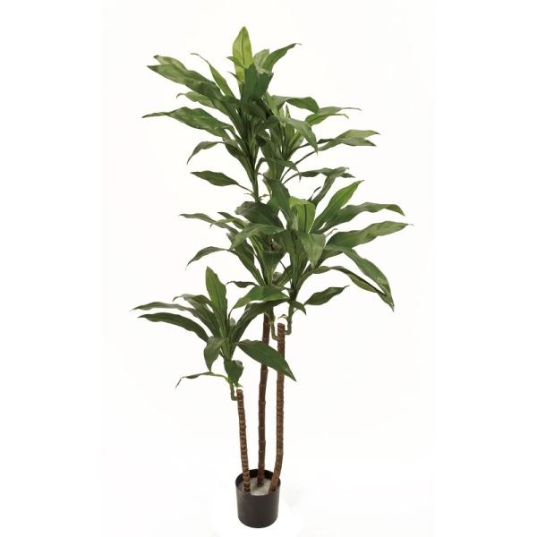 人工観葉植物 ドラセナフレグランスポットL 高さ130cm fg9097 (代引き不可) インテリアグリーン 造花
