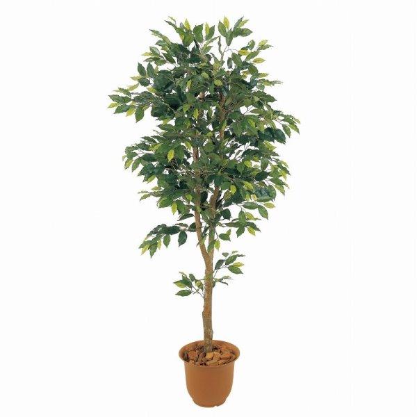 人工観葉植物 ベンジャミンフィカス1.8m 高さ180cm sk1028 (代引き不可) インテリアグリーン 造花