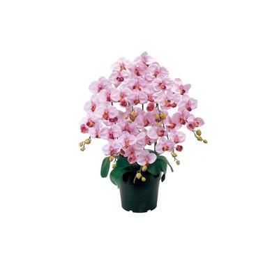 人工観葉植物 ピュアオーキッド7本立(ファレノ)ラベンダー 光触媒加工 高さ75cm zv6200 (代引き不可) インテリアグリーン 造花