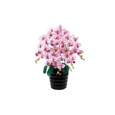 人工観葉植物 ピュアオーキッド7本立(ファレノ)ラベンダー 光触媒加工 高さ78cm zv6700b (代引き不可) インテリアグリーン 造花